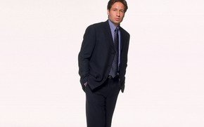 Picture the series, The X-Files, David Duchovny, Classified material, Fox Mulder