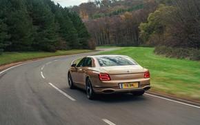 Picture Bentley, Flying Spur, 2020, V8, 2021, before turning, Flying Spur V8