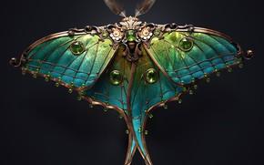 Picture minimalism, butterfly, artist, rendering, digital art, artwork, black background, insect, jewel, copper, emeralds, Sasha Vinogradova