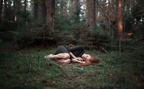 Picture forest, girl, sleep, Alexander Kurennoy