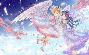 Picture girls, anime, art, Card Captor Sakura, soar, girlfriend, Sakura - collector cards