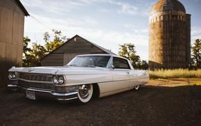 Picture Cadillac, 1964, DeVille, 1964 Cadillac DeVille, Cadillac DeVille