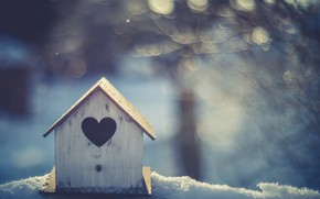 Picture winter, heart, house