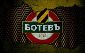 Picture wallpaper, sport, logo, football, Botev Plovdiv