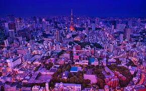 Picture trees, lights, tower, home, the evening, Japan, Tokyo, panorama, megapolis, the view from the top
