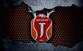 Picture wallpaper, sport, logo, football, Jeju United