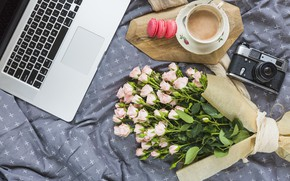 Picture flowers, roses, bouquet, laptop, pink, pink, flowers, beautiful, romantic, coffee cup, roses, laptop, macaron, a …