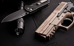 Picture Gun, Sig Sauer, Pistol, Knife