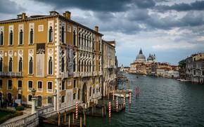 Picture Italy, Venice, The Grand canal, Santa Maria della Salute