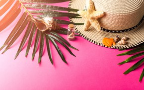 Picture sand, leaves, branches, background, hat, Bank, shell, starfish