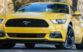 Picture car, Mustang, muscle car, ford Mustang