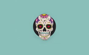 Picture Color, Minimalism, Skull, Style, Background, Art, Art, Style, Background, Minimalism, Sugar skull