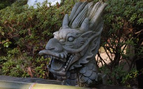 Picture sculpture, stone head, the dragon's mouth