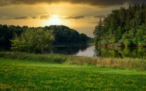 Picture greens, forest, summer, grass, sunset, flowers, lake, shore, glade, meadow, pond