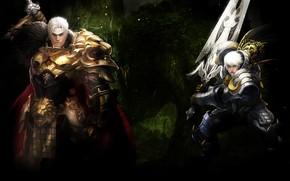 Picture sword, male, guy, Echo of Soul