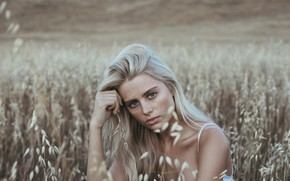 Picture BLONDE, LOOK, GRASS, FIELD, MOOD, FACE, Allison Holton