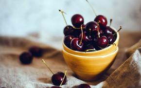 Picture cherry, fruit, ripe