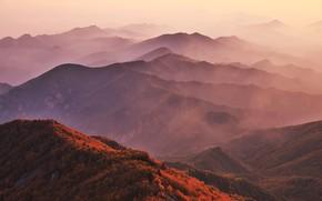 Picture Mountains, Autumn, The slopes, Ranges