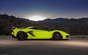 Picture sunset, Roadster, the evening, Lamborghini, supercar, side view, Aventador, 2020, SVJ