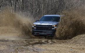 Picture squirt, earth, Chevrolet, dirt, pickup, Custom, Silverado, 2020