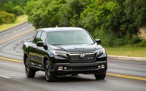 Picture black, track, turn, Honda, pickup, shrub, Black Edition, Ridgeline, 2019