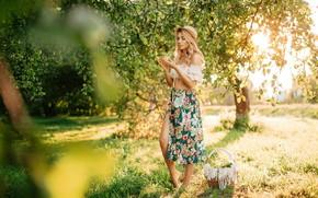 Picture grass, tree, basket, apples, skirt, Girl, hat, Apple, Olga Anikina, Katerina Chernousova