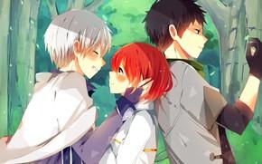 Picture girl, romance, anime, art, guys, Snow white, Akagami no Shirayukihime, Zen, Obi
