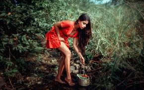 Picture girl, nature, Vidya