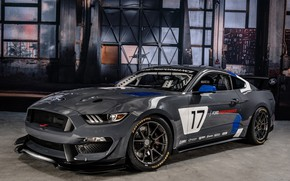 Picture Muscle, Race, Ford Mustang, Gray, GT4, Vehicle