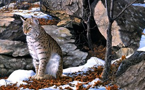 Picture winter, forest, leaves, snow, figure, picture, art, painting, lynx, late autumn, George Shumate