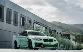 Picture tuning, 2018, Z Performance, BMW M2