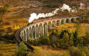 Picture Autumn, Train, Glenfinnan, Arched bridge