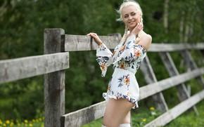 Picture girl, smile, dress, braids, legs, Andrey Popov