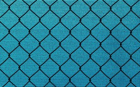 Picture background, mesh, texture, netting