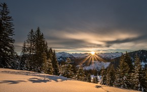 Picture winter, light, snow, trees, sunset, mountains