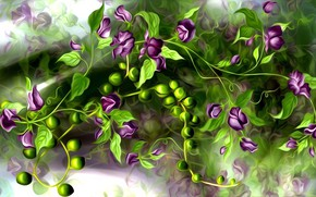 Picture leaves, flowers, rendering, stems, plant, picture, chickpeas, hummus, chickpeas