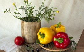 Picture still life, vegetables, pepper, still life on a rural theme