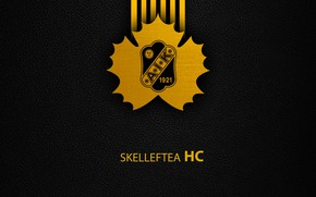 Picture wallpaper, sport, logo, hockey, Skelleftea AIK Hockey