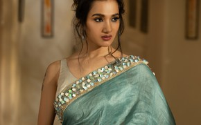 Picture model, beauty, bollywood, saree, fashion model, traditional, indian actress