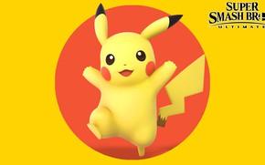 Picture round, pokemon, Pikachu, Super Smash Bros