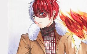 Picture fire, guy, coat, My hero Academy, Todoroki Shouto, My Hero Academia, Boku No Hero Academy, …