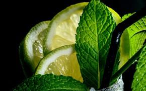 Picture lime, citrus, mint