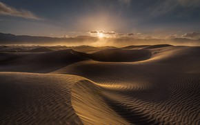 Picture sunset, the wind, desert