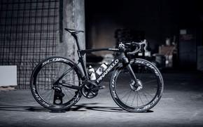 Picture bike, sport, bicycle, Carbon, Spor, DOGMA, PINARELLO, bike •