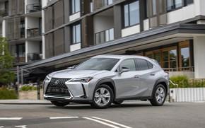 Picture Lexus, 2020, Lexus UX 200