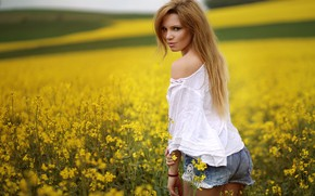 Wallpaper field, girl, blouse, summer
