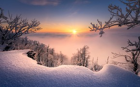 Picture winter, snow, trees, branches, sunrise, dawn, morning, the snow, Slovakia, Radoslav Cernicky, Small Carpathians