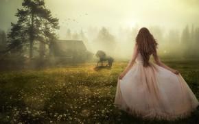Picture girl, nature, horse, back, dress, house, Evgeny Dvoretckiy