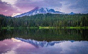 Picture forest, mountains, reflection, pond