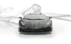 Picture Roadster, Lamborghini, supercar, front view, Aventador, Mansory, 2019, Carbonado Evo